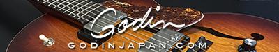 GODIN-Banner