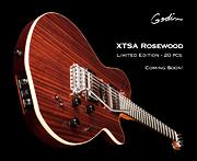 20本限定XTSA Rosewood